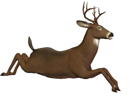 cervidae: 3D rendering of a leaping deer Stock Photo