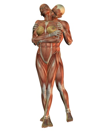 3D rendering of anatomy and muscular man photo