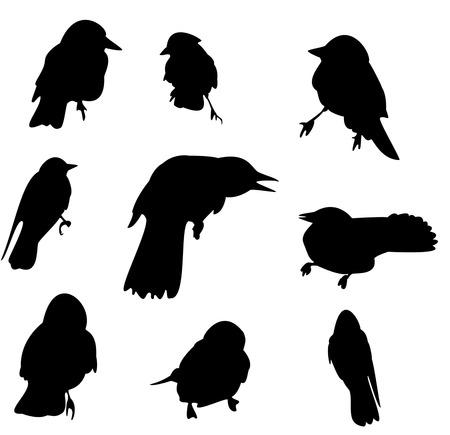 Crow silhouette set