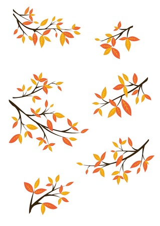 A collection of images of tree branches covered with fall foliage. Standard-Bild - 110963800