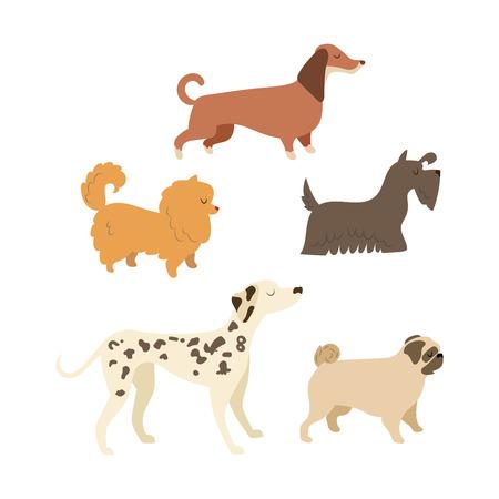 Cartoon dog illustration collection. 2018 dog symbol Illustration