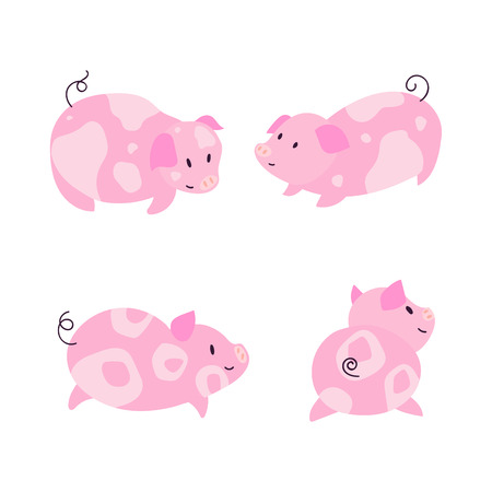 Cute little pig characters with spots illustration set. 2019 symbol