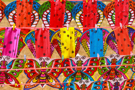 animal kite: colorful animal and insect kite