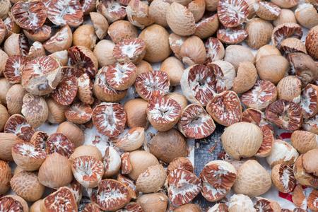 closeup group of Areca catechu cut