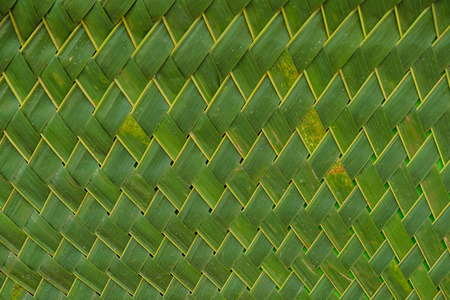 background of green and yellow nipa leaf weave Stockfoto