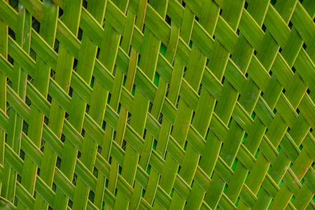 background of green and yellow nipa leaf weave