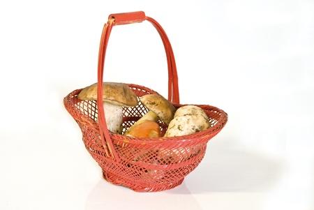 ovule: Basket of mushrooms