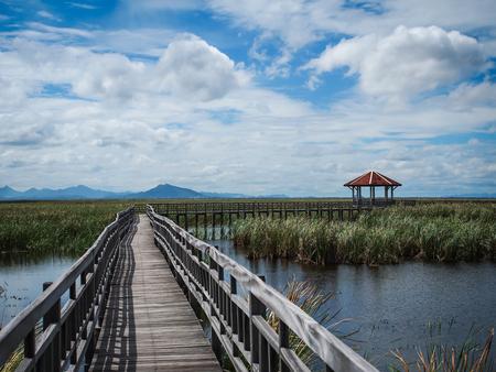 Path to nature,, place to travel in Khao Sam Roi Yot, Prachuap Khiri Khan, Thailand.