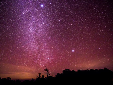 The colorful sky with clusters of stars and milkyway galaxy above the shadow of trees annd mountain, Chiangmai, Thailand.