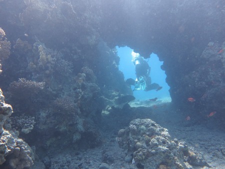eilat: Diving in Eilat site cave Sea Red Stock Photo