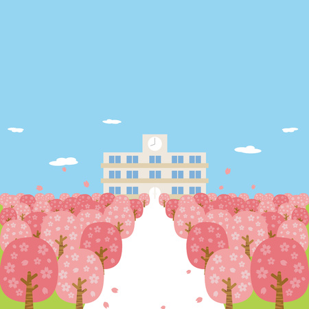 Spring cherry blossoms cherry blossoms full bloom school