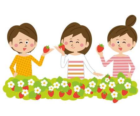 adult girls 3 strawberry picking
