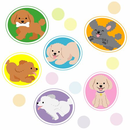 Toy Poodle Icon Vectores