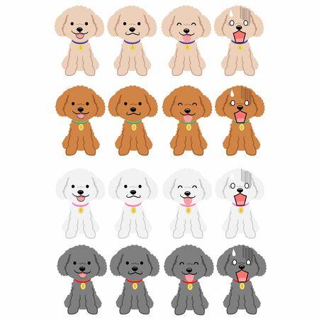 Sitting Toy Poodle Vektorové ilustrace