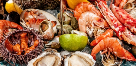 A seafood mix photo