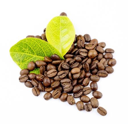 コーヒーの穀物と葉