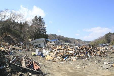 the Great East Japan Earthquak