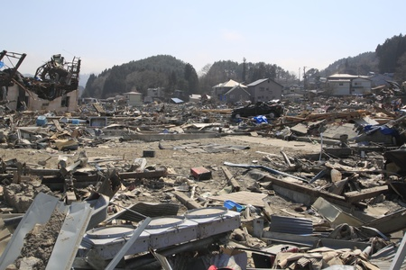 natural disaster: the Great East Japan Earthquak