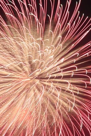 hanabi: Japanese traditional fireworks against a black sky