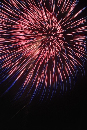 日本の花火の夜に 写真素材