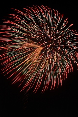 hanabi: Japanese firework  in night