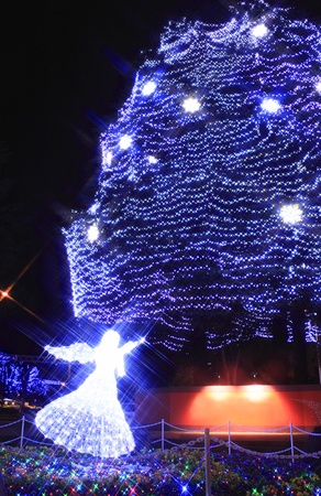 The light of pageant in Sendai