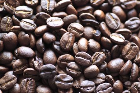 coffee beans Stock Photo - 11504621