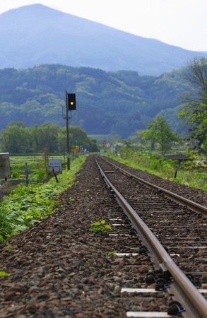 fresh green and railway Stock Photo - 11798725
