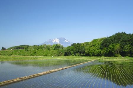 pastoral: Mt.Iwate and pastoral