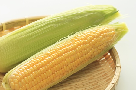 corn yellow: ma�z amarillo Foto de archivo