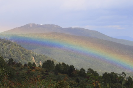 rainbow and colorful  leaves in Hachimantai photo