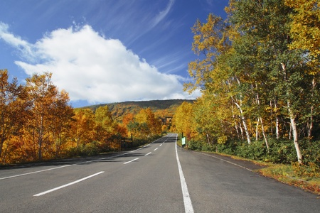 road  and  some  colorful  leaves in Hachimantai
