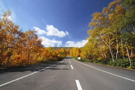 road  and  some  colorful  leaves in Hachimantai photo