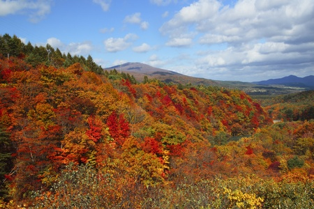gully:  colorful  leaves and   Mt.Iwate in Gully  Matsukawa