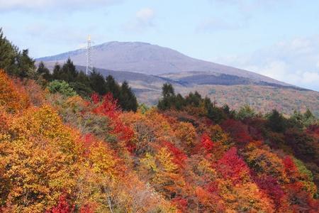 gully: hojas de colores y Mt.Iwate en Gully Matsukawa