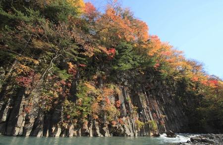 gully: hojas de colores en Gully Matsukawa