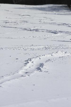 skipiste: Ski in Appi Hachimantai Iwate Touhoku Japan laufen