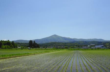 pastoral: Mt Himekami  and pastoral landscape  in  Morioka,  Iwate,  Touhoku, Japan Stock Photo
