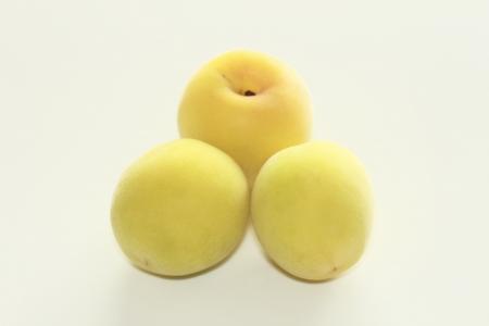 Ripe fruits of Ume (Prunus mume or Japanese apricot) Stock Photo - 14322545