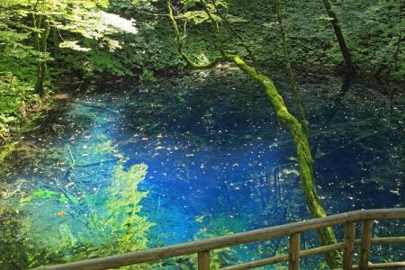 paysage: Aoike  in  Shirakami-Sanchi