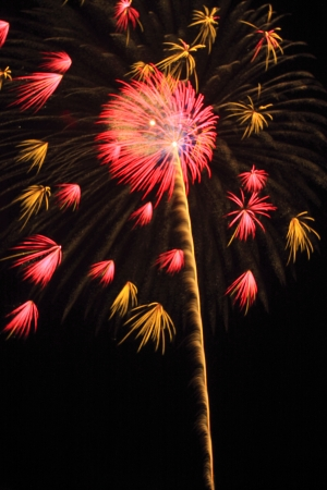 Japanese traditional fireworks in the night sky  photo