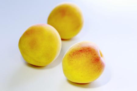 ume: Close up  Ripe fruits of Ume