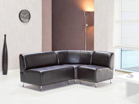 Office sofa in the interior