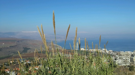 Sea of Galilee view
