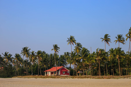 Palm trees against the blue sky and a beautiful little house on the beach of northern Goa