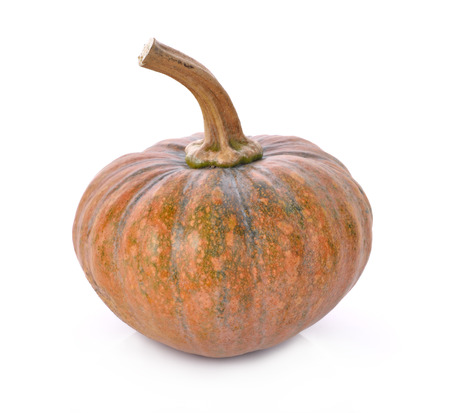 fruits background: Pumpkin isolated on the white background