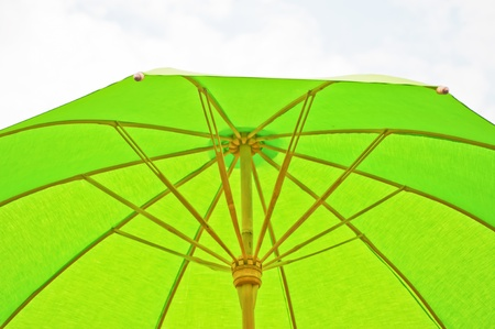 green umbrella photo