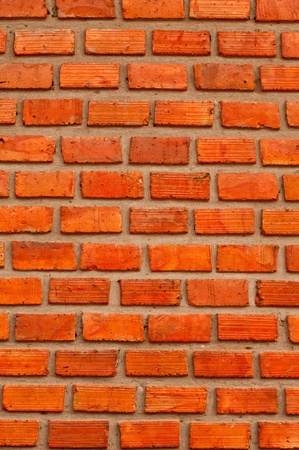 Red brick wall, square format  photo