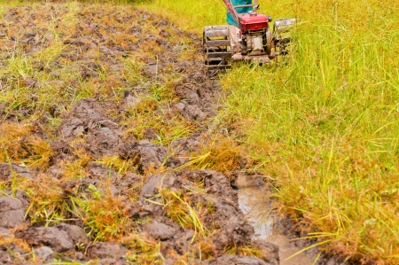 hard working farmer preparing the ground for the growth of rice in the north east of thailand Stock Photo - 13811782