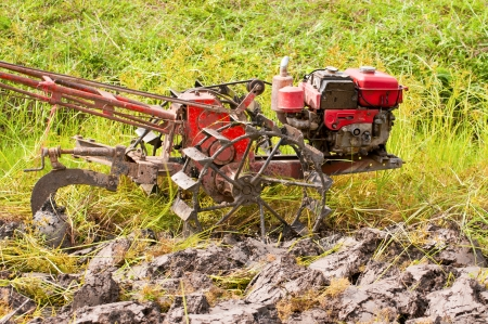 Thai country tractor in field rice  photo